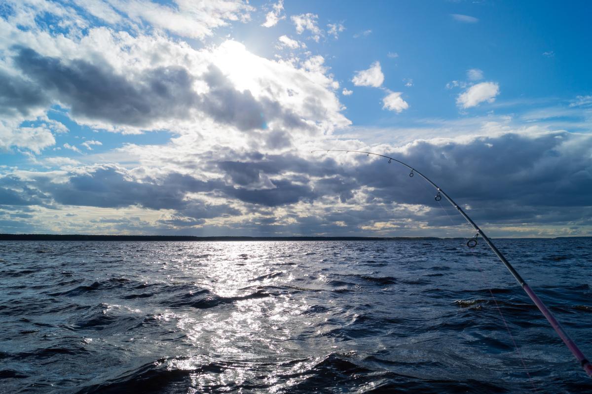 Pesca al Bonito a Vela en Gijón