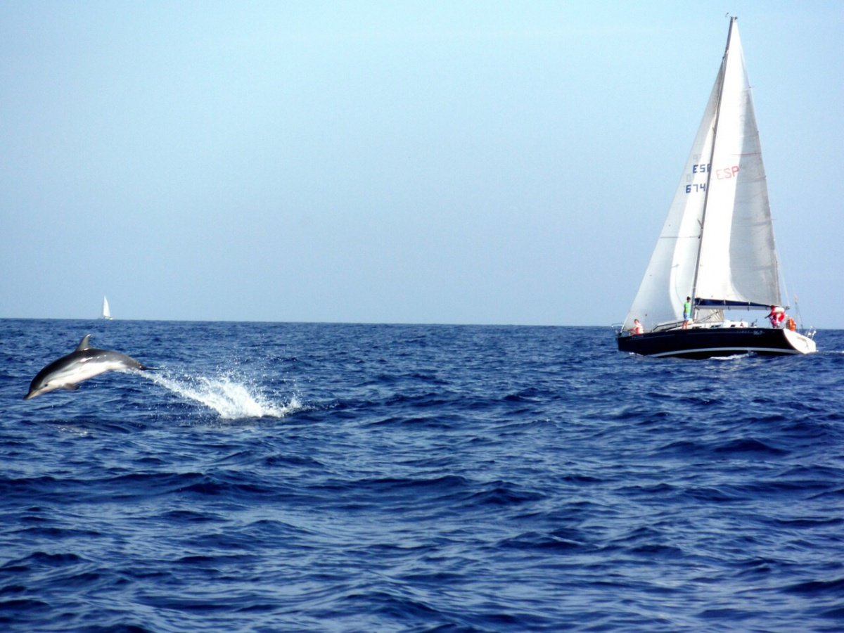 Curso avanzado de navegación en el Mediterráneo