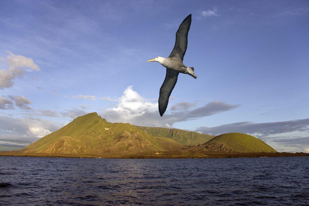 ¡Vuelta al mundo en velero en 18 meses! - Regata ARC desde el Caribe