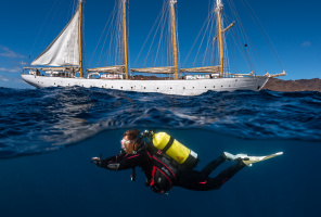 Dive and sail from the Canary Islands to Funchal