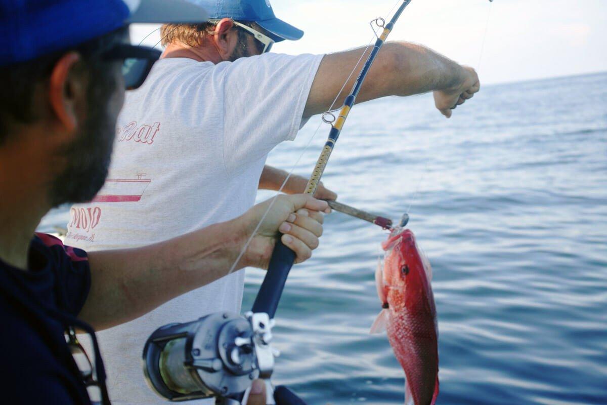 Excursión de pesca costera desde Barcelona