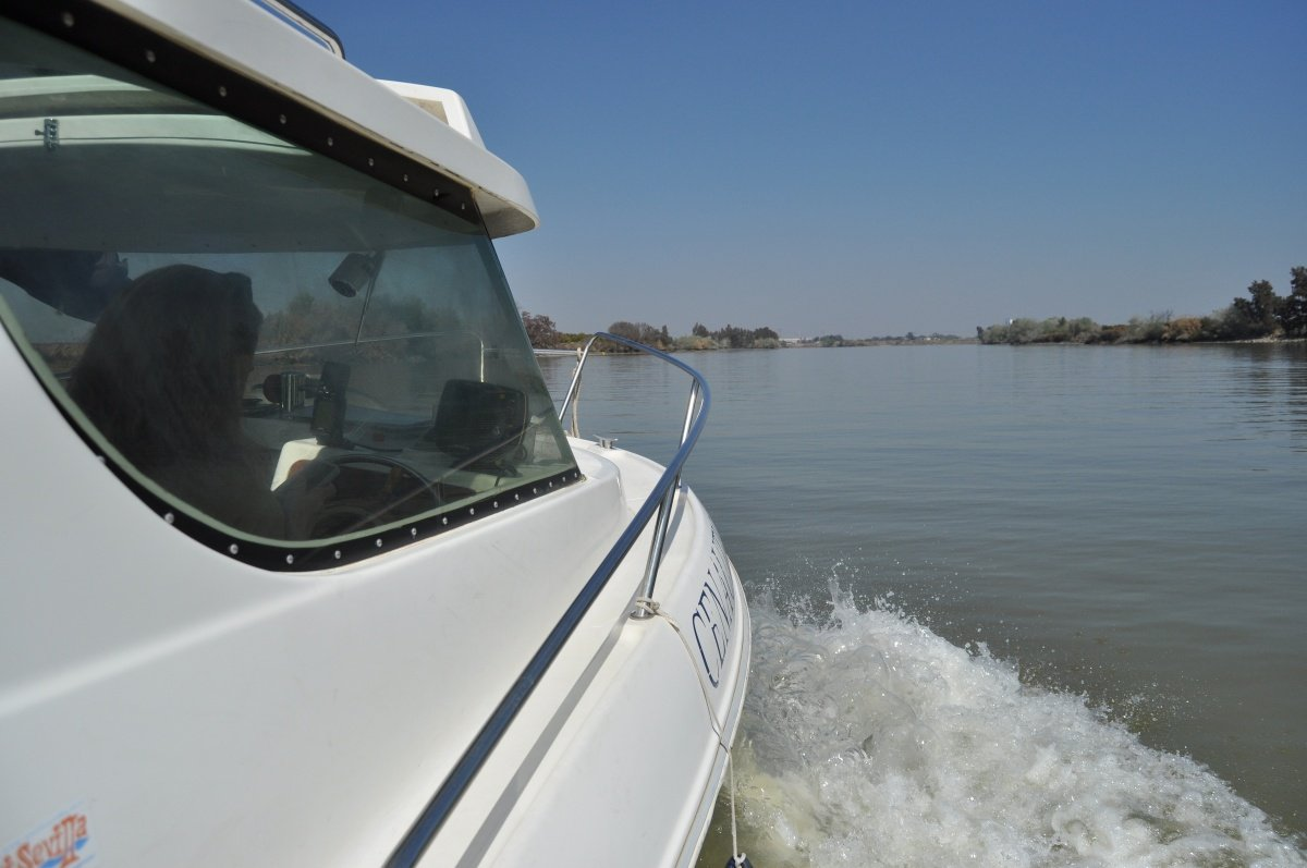 Curso para obtener la licencia de navegación en Sevilla