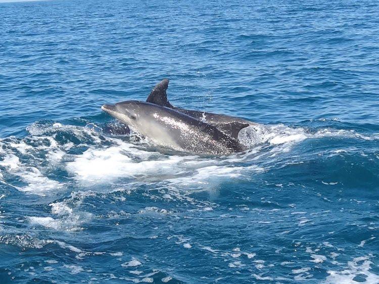 Semana a vela por las costas -y la historia- de Cádiz y Huelva