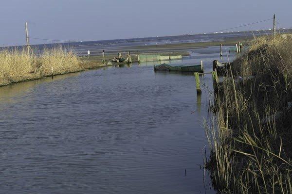 Travesía de cuatro días por el delta del Ebro