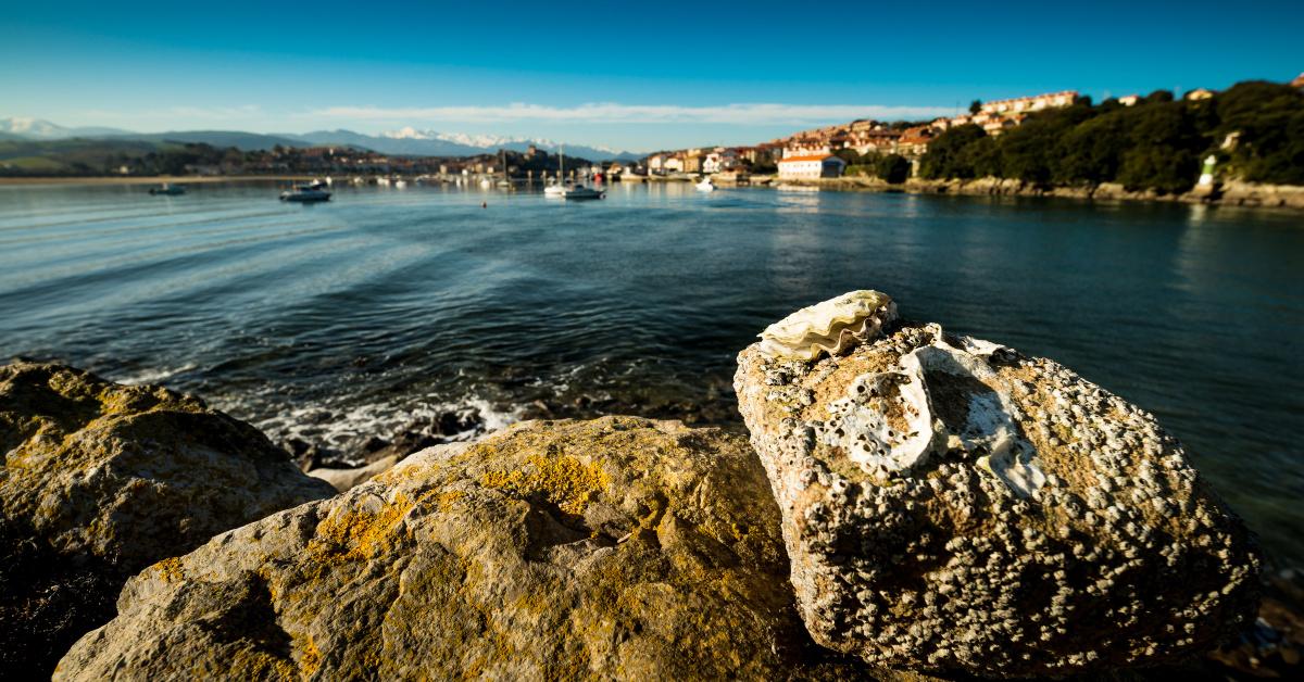 La Gran Travesía: Gijón - San Vicente de la Barquera