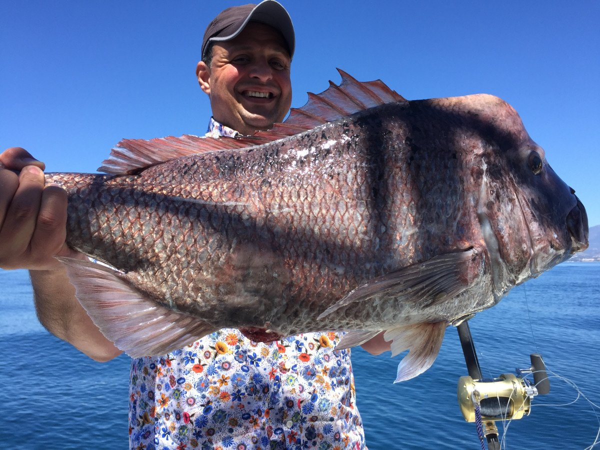 Salida de pesca y paseo de 2 horas desde Marbella