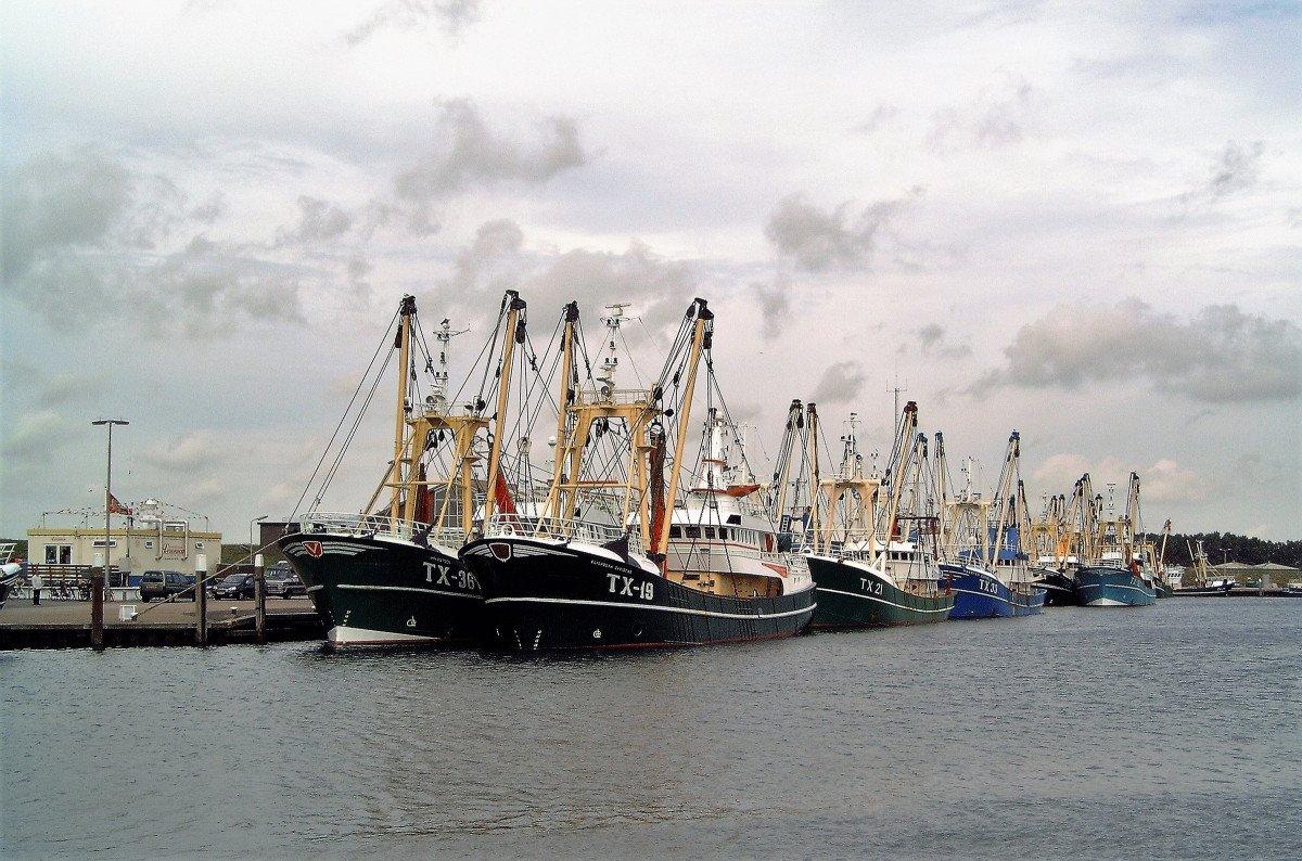 Actualización de Formación Básica en Seguridad Marítima en Altea
