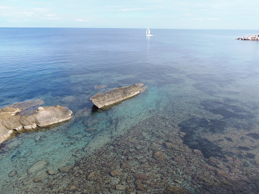 Salida de medio día desde Santa Pola a Isla Tabarca