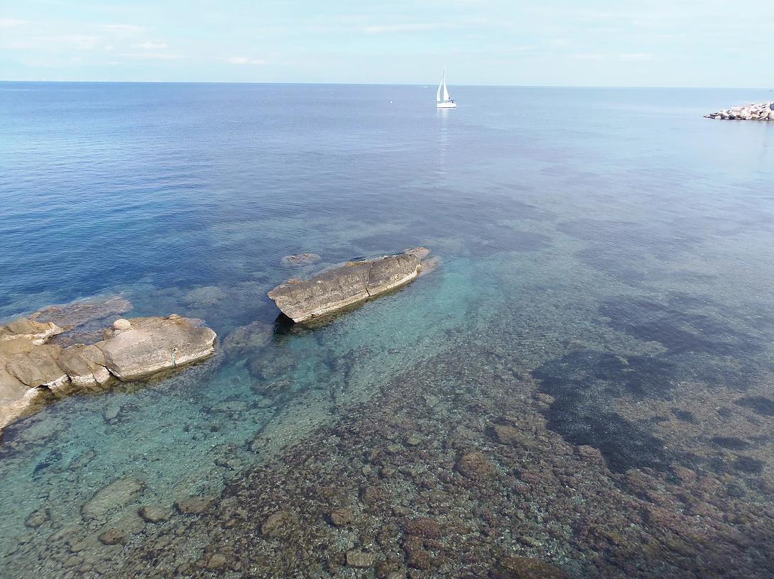 Salida de día completo de Santa Pola a Isla de Tabarca