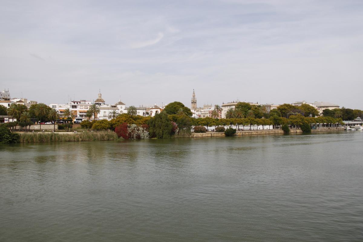 Travesía por el río Guadalquivir (Gelves - Coria).