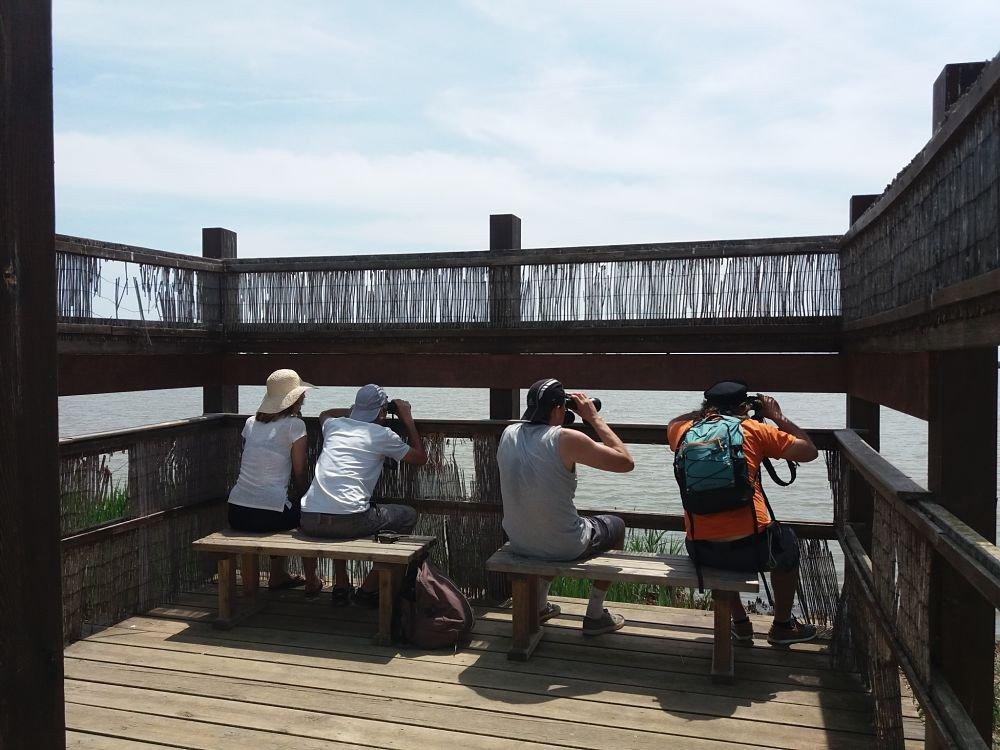 Dos puentes para navegar en velero por las Tierras del Ebro