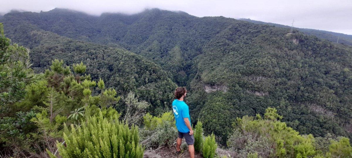 Aventura a vela para descubrir la riqueza natural de El Hierro y La Gomera