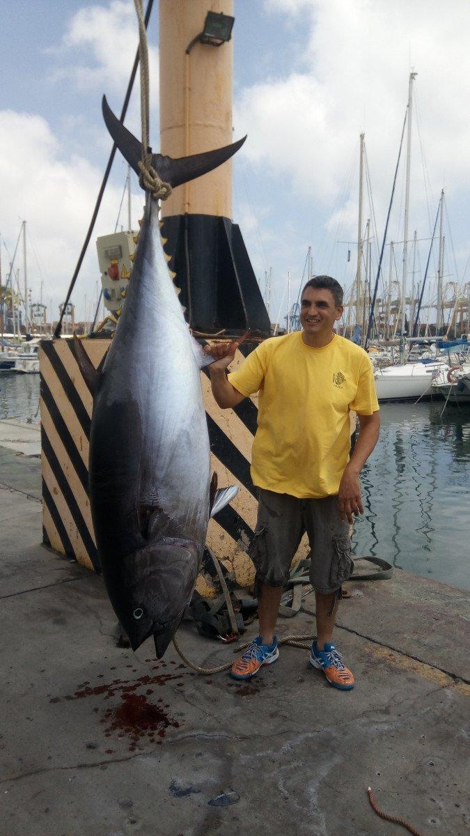 Pesca del atun gigante