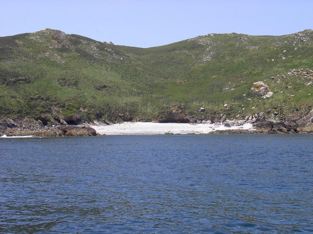 Salida por la ría de Pontevedra y la illa de Ons