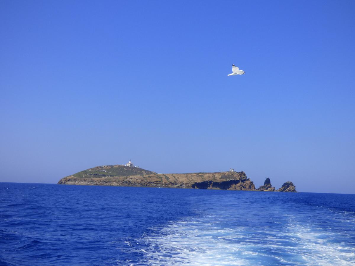 Travesía de Valencia a las Islas Columbretes