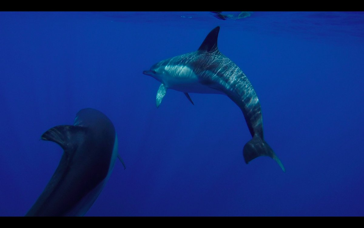 Navega en velero por las islas Jónicas