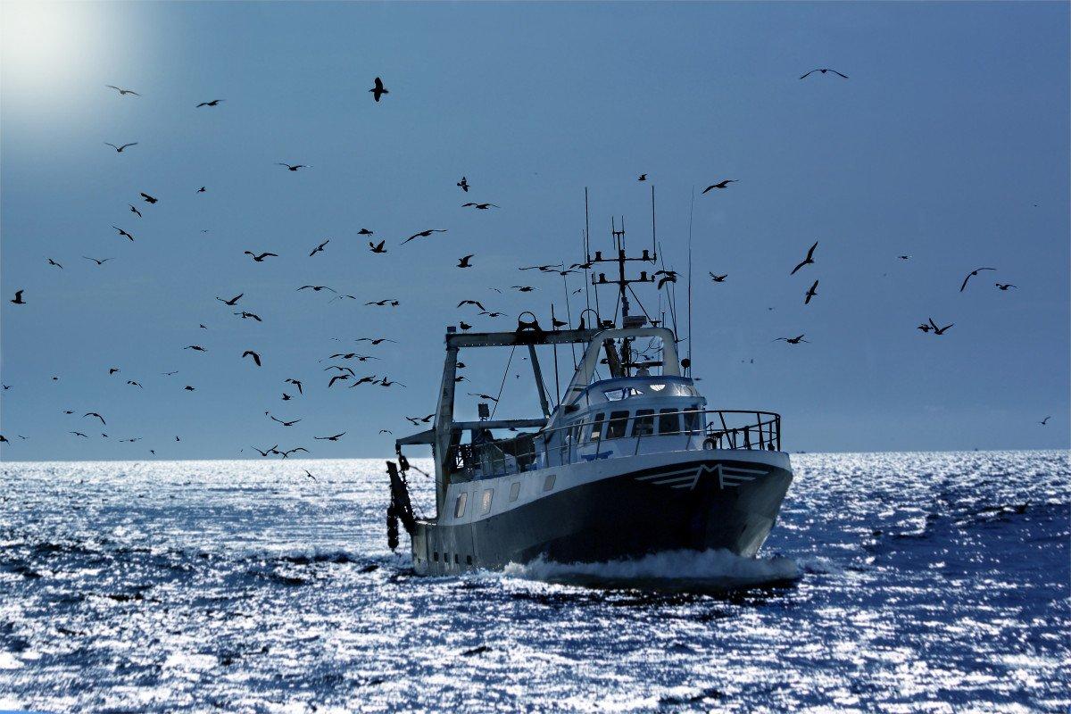 Actualización de Formación Básica en Seguridad Marítima en Alicante