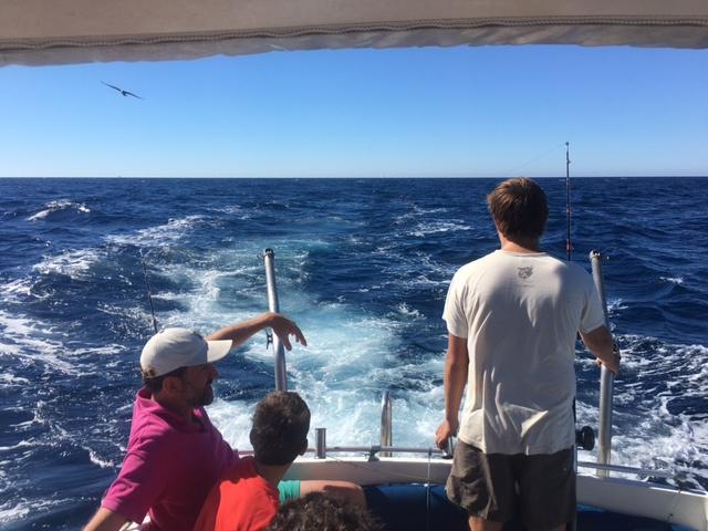Salidas de pesca, excursión, naturaleza, buceo en El Rompido