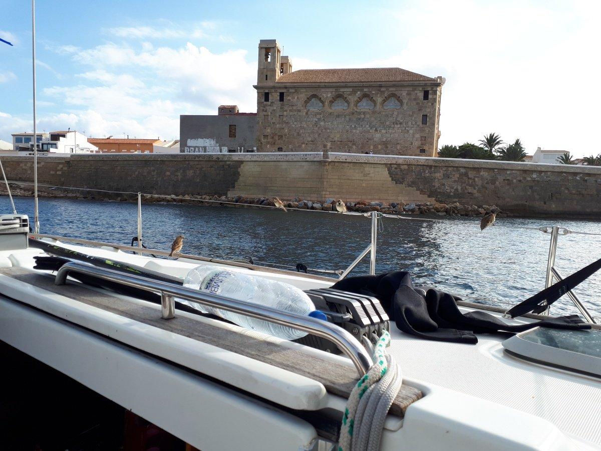 Curso intensivo de vela en crucero en Santa Pola